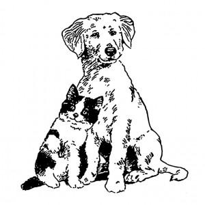 coloriage-chien-chat